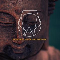 E.S.O. - Frozen Teardrops (instrumental)