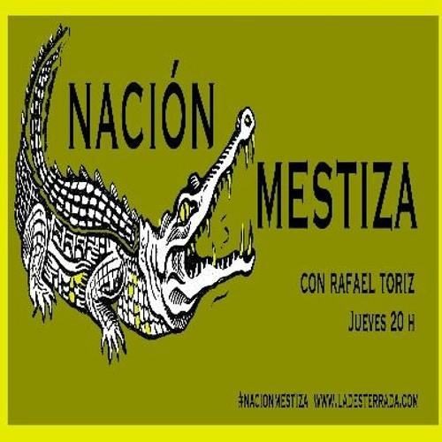 Nación Mestiza