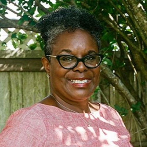 A conversation with Dana-Ain Davis on Reproductive Justice