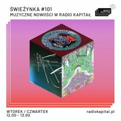 "Radio Kapitał Premiere: ""ICEBERG"" (from ""Stoned Gypsy Wanderer"" Vinyl)"