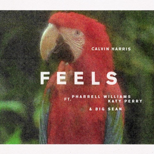 Calvin Harris Releases 'Feels' With Album Around The Corner
