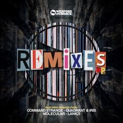Gunston 'Stay Real' (Quadrant & Iris Remix) [Weapons of Choice Recordings]