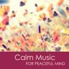Yoga Nidra - Yoga Music for Falling Asleep