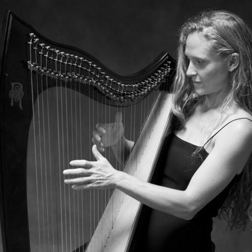 Funky Town - harp cover (30 Sec Wedding Sampler)