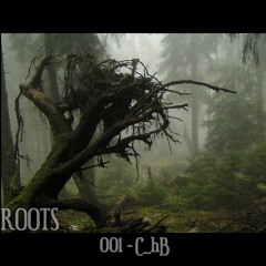 #ROOTS 001: C_hB