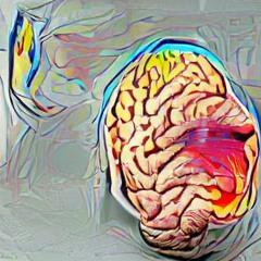 Shut Your Brain