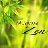 Musique pour dormir (Musiques Zen)