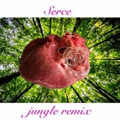 Hey - Nie więcej (Wiktross's Jungle remix)[SERCE]