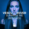 Surprise Me (feat. Riiver) (Marc Kiss & Crystal Rock Extended Mix)
