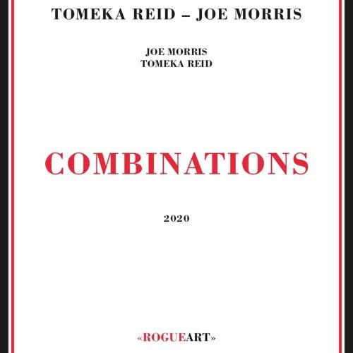 In The Mid Ground Excerpt - T Reid J Morris COMBINATIONS