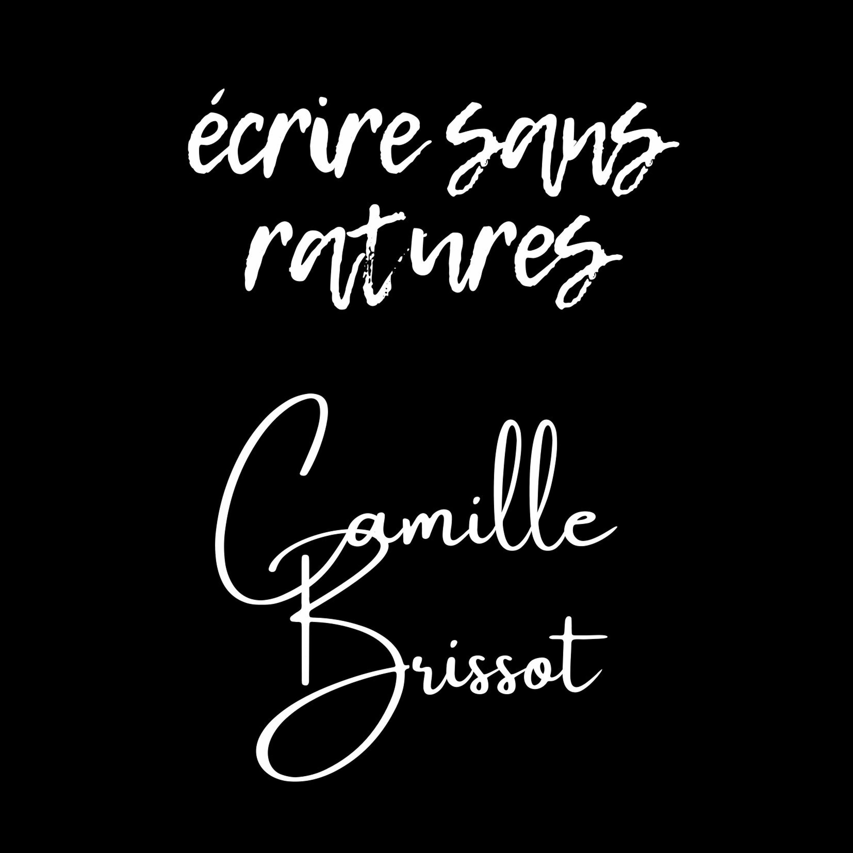 3# Dans le processus créatif de... Camille Brissot