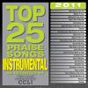 Jesus Messiah (Top 25 Praise Songs Instrumental 2011 Album Version)