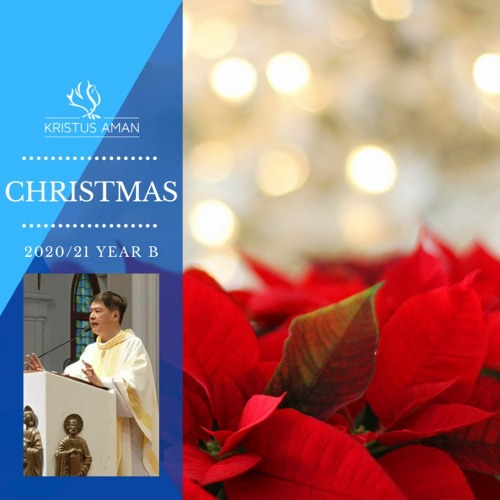 Daily Gospel Reflexions by Fr Michael Chua - Christmas (Year B) 2020/21
