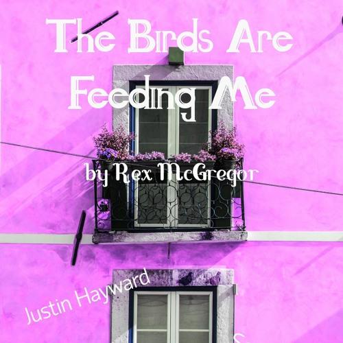 Episode Five - The Birds are Feeding Me
