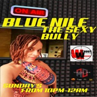 VERBAL INK AFTER DARK EPISODE 19 FEATURING BLUE NILE THE SEXY BULLY