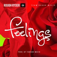 Rough Ryder Gh  - Feelings   [ Prod. By TubhaniMuzik ]