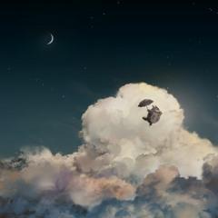 Sky Totoro - Sophonwat