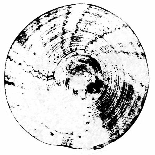 MNMT Premiere: Fabrizio Lapiana – Collective Chaos (Neel & Laertes Remix)