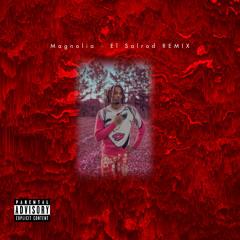 Magnolia - El Salrod Remix
