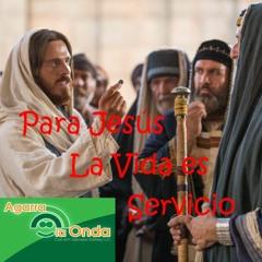 Evangelio de Hoy: 08/21/21-Sábado 20º Ordinario-Ciclo B-Mt 23, 1-12-Desde Cristo todo ha cambiado.
