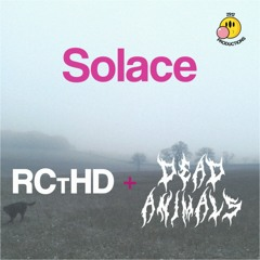 Solace (with Dead Animals)