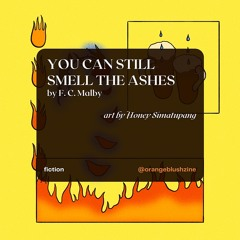 You Can Still Smell The Ashes - Orange Blush Zine