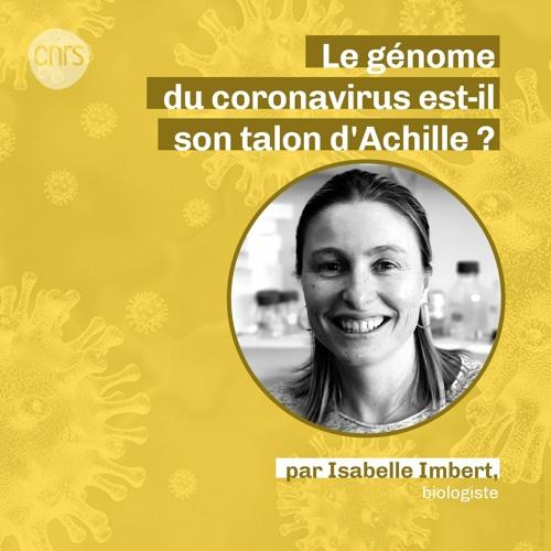 Le génome du coronavirus est-il son talon d'Achille ? par Isabelle Imbert