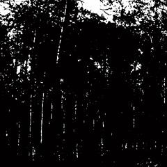 Lost In Ether   P R E M I E R E   Edit Select - Far North (Blazej Malinowski Remix)[Kontrafaktum]