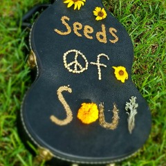 Birds & The Bees (Seeds Of Soul)
