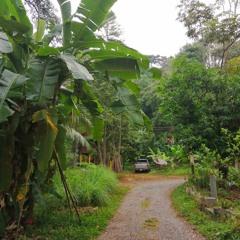 Lever De Jour À Kai Bae, Ko Chang, Thaïlande