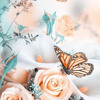 In bloom_31.wav