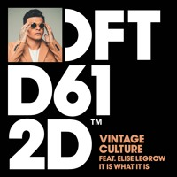 Vintage Culture featuring Elise LeGrow 'It Is What It Is' - Out 04/12