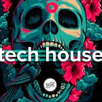 Bryan Prisco Tech House Mix Vol 5
