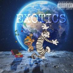 Exotics (Prod.ZZ)