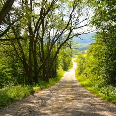 Heart Leadership (HL) 2: Searching for a New Path
