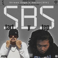 STRESS EDGE X HECTOR - SBS(START BY STEP)