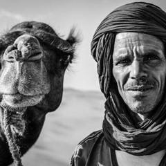 تنويحة صياد الصقور من فيلم الهروب للموسيقار مودي الإمام   أداء وائل الفنشي