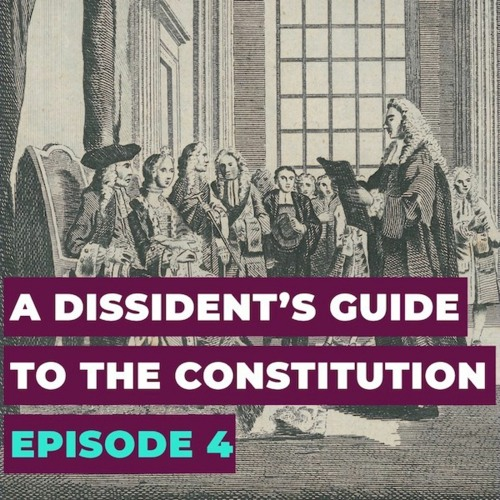 A Dissident's Guide to the Constitution: Episode 4 — Democracy: The Books