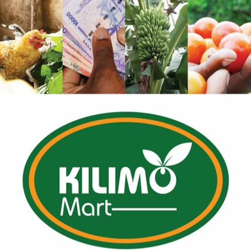 Online launch of the KilimoMart Application