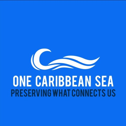 Celebrating & Reflecting on the Caribbean Sea on World Oceans Day