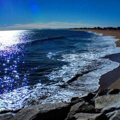 SKYHOUNDS BURNAWAY -  Golden Sea