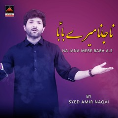 Na Jana Mere Baba - Syed Amir Naqvi   Noha Shahadat Mola Ali A.S - Noha 2021