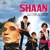 Janu Meri Jaan (Shaan / Soundtrack Version)