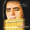 Download Cantando Curo Mi Herida Mp3