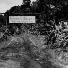 Jonestown 3 (End)