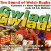 Singing During The Game - Cwm Rhondda/Paul Ringer/Hymns And Arias