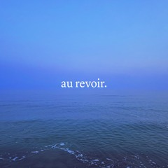 Au Revoir (Adios) Cover - The Front Bottoms