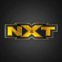 Go4Gold! - SPECIAL Cinco de Mayo episode!!! - WWE NXT RECAP 5/4/2021