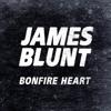 Bonfire Heart mp3