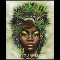 WavX and R33S3S- Indica